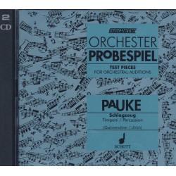 Orchester Probespiel
